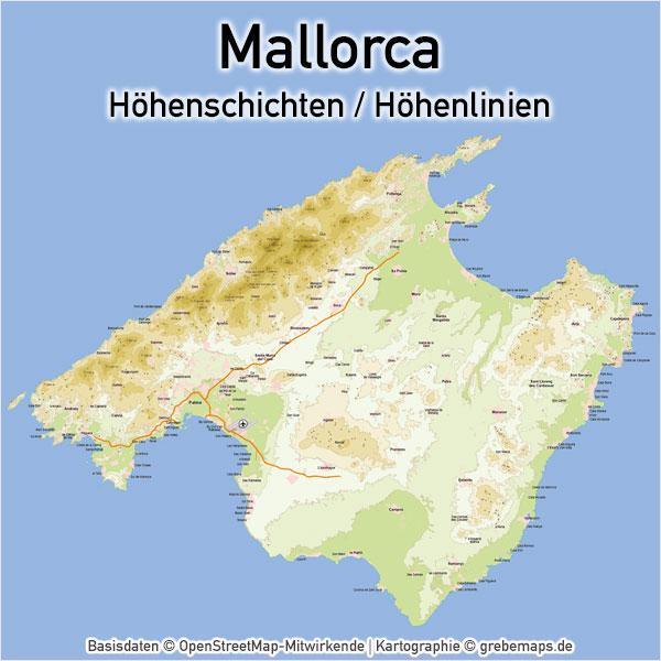 Karte Mallorca Höhenschichten Höhenlinien Vektorkarte Landkarte Inselkarte